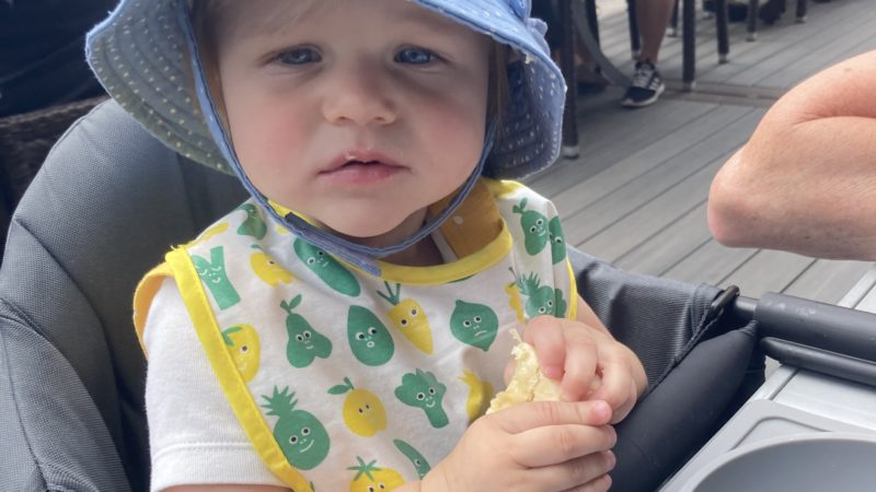 Andee's Eats: Feeding an Almost One Year Old
