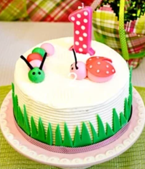 Plan for Andee's FIRST Birthday Party